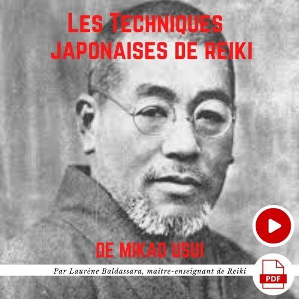 formation techniques japonaises de Reiki