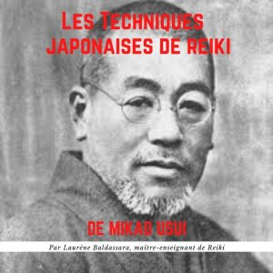 Formation complète : Les Techniques Japonaises de Reiki (vidéo + manuel)