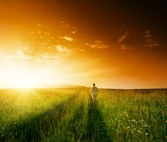 chemin et soleil