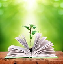 livre ouvert avec lumière