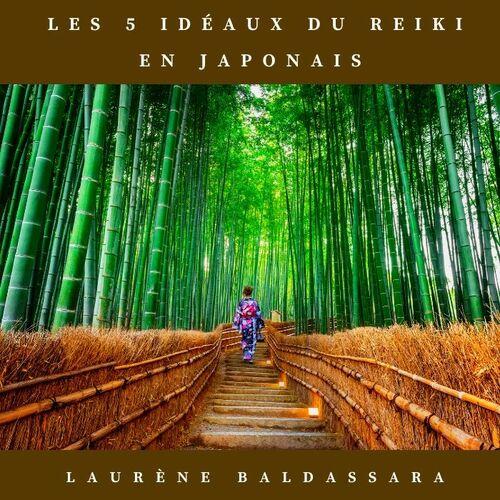 CD 5 idéaux du reiki