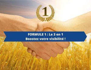 Publicité pour les pro : Formule 1