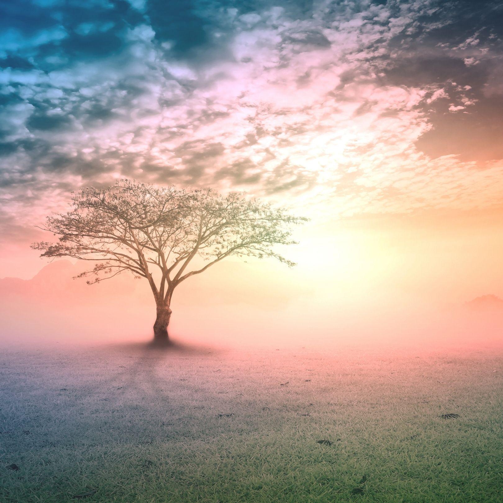 Articles bien-être et spiritualité